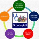 organi_collegiali